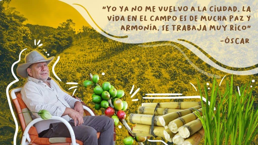 PORCICULTOR COLOMBIA BIODIGESTORES
