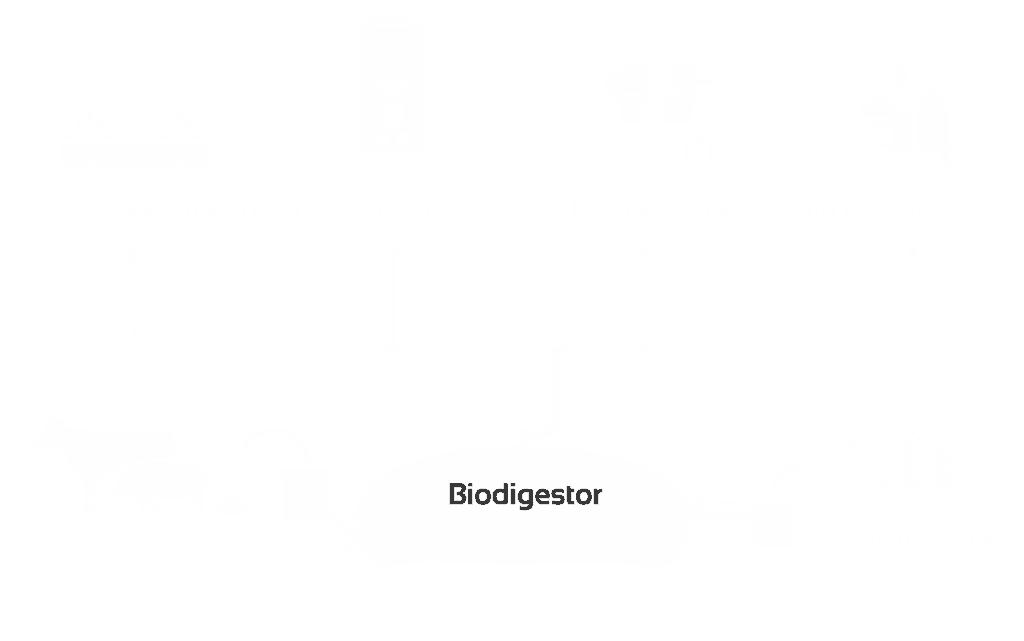biodigestor, sistemabio, biol, diagrama