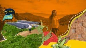 Liliana: El arte de encontrar soluciones