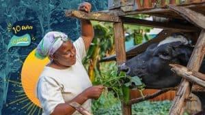 Teresia: Las herramientas del cambio