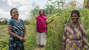 International Day of Rural Women: Equal Opportunities Between Genders Is a Task for All