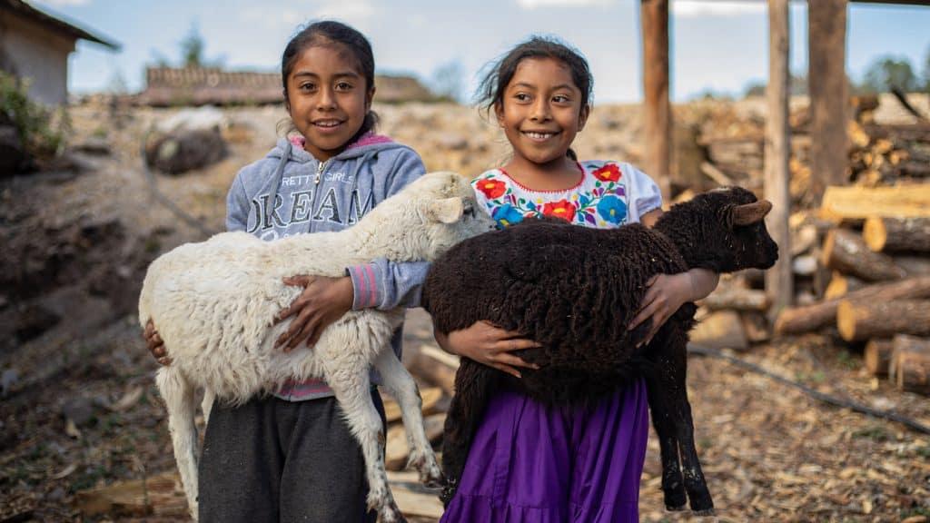 girls feminism gender agriculture