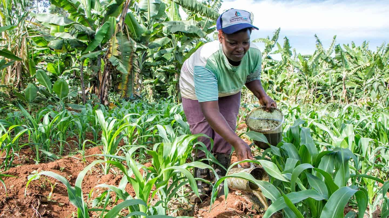 Biofertilizer pilots kickoff to add value to farmers