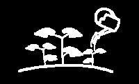 fertilizacion, bio, biogas