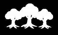 arboles salvados