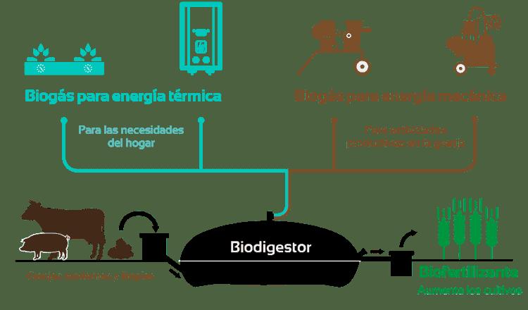 Sistema.bio-biodigestores, beneficios-biogas-biol