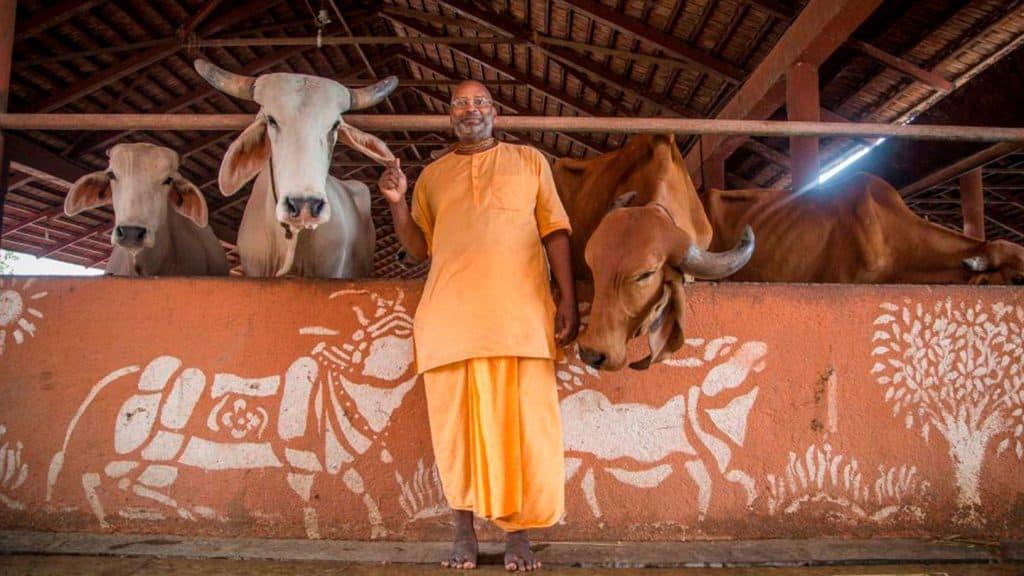 blog, sistemabio, farmer