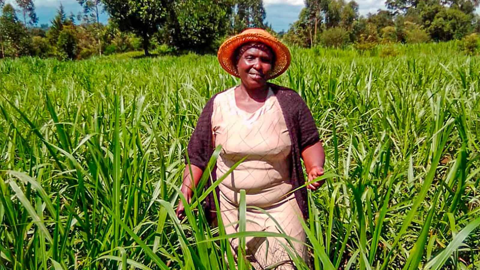 kenya-farmers-2
